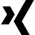 XING Profile